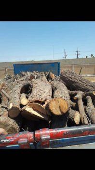 توقیف کامیونت حامل چوب قاچاق در «باوی»