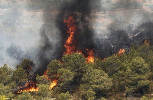 عمدی بودن ۹۰درصد آتش سوزی ها در گتوند