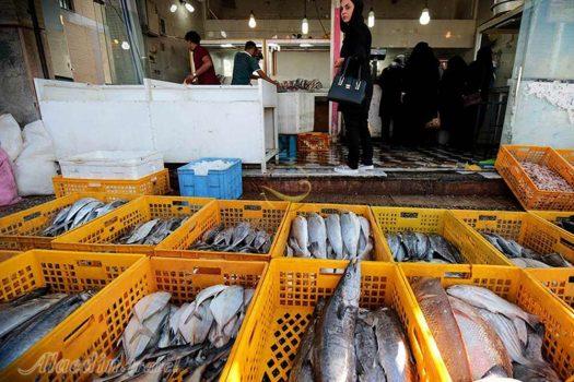 لزوم راهاندازی بازار حراج ماهی در خوزستان